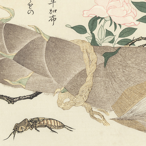 Mole Cricket and Earwig by Utamaro (1750 - 1806)