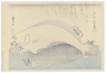 Flounder, Mebaru, and Cherry Blossoms by Hiroshige (1797 - 1858)