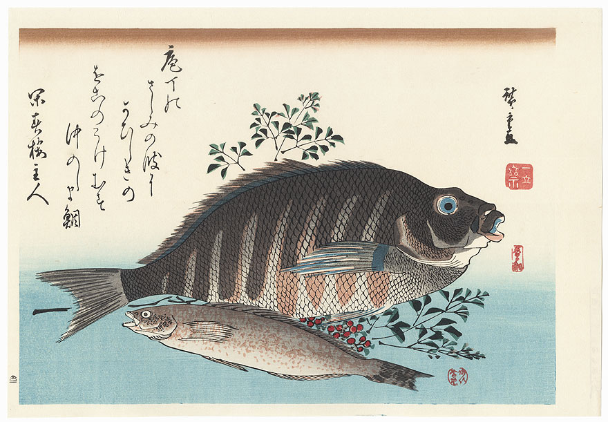 Shimadai, Ainame, and Nandina by Hiroshige (1797 - 1858)