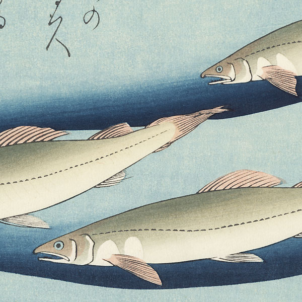 Trout by Hiroshige (1797 - 1858)