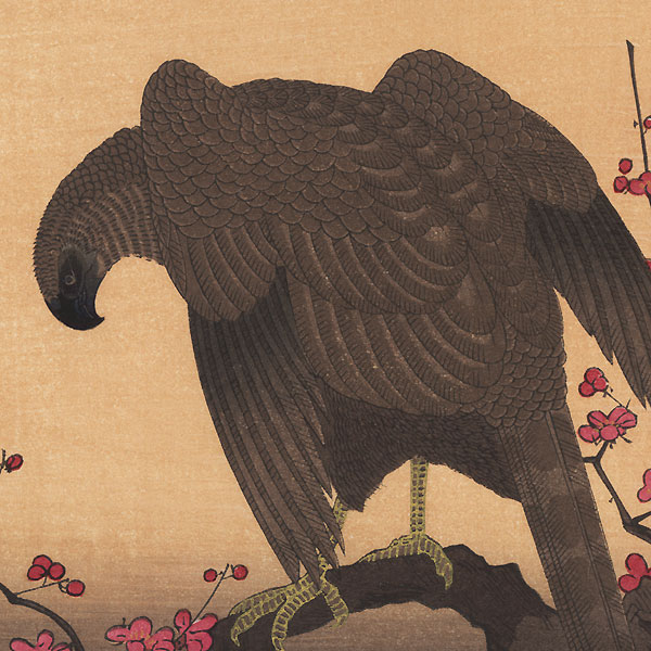 Hawk and Shrike by Utamaro (1750 - 1806)