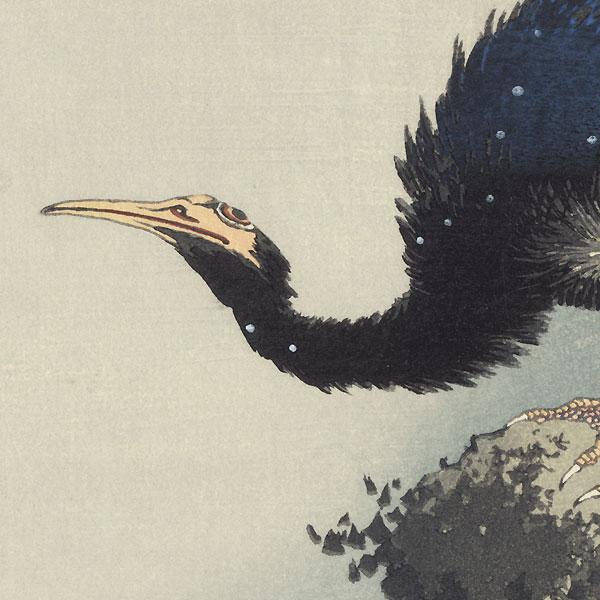 Cormorant by Hokusai (1760 - 1849)