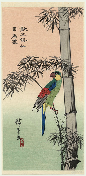 Macaw by Hiroshige (1797 - 1858)