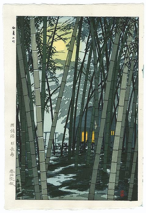 Bamboo in Early Summer, 1954 by Shiro Kasamatsu (1898 - 1991)