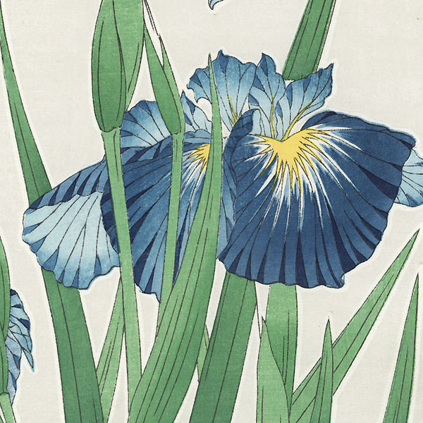 Blue Irises by Kawarazaki Shodo (1889 - 1973)
