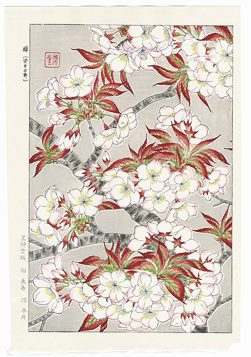 Yoshino Cherry Blossoms (Right) by Kawarazaki Shodo (1889 - 1973)