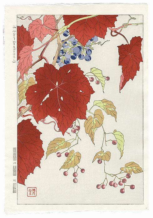 Autumn Grape Vine by Kawarazaki Shodo (1889 - 1973)