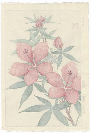 Pink Hibiscus by Kawarazaki Shodo (1889 - 1973)