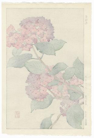 Hydrangea by Kawarazaki Shodo (1889 - 1973)