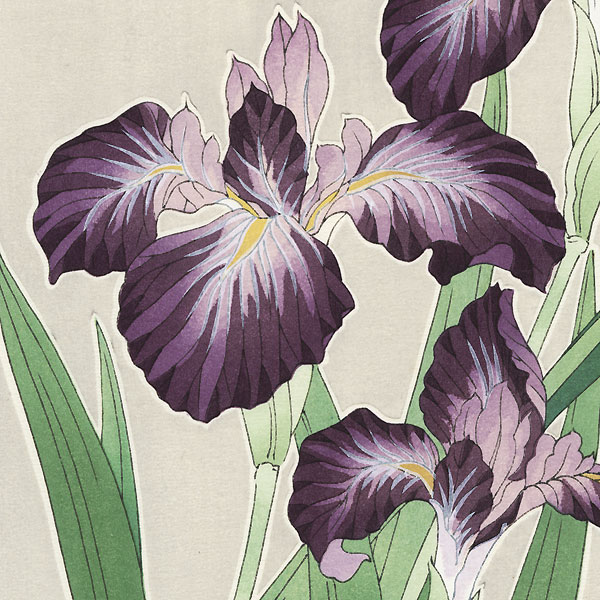 Purple Irises by Kawarazaki Shodo (1889 - 1973)