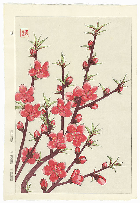 Peach by Kawarazaki Shodo (1889 - 1973)