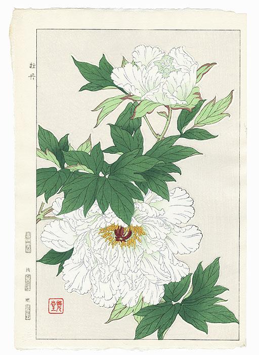 White Peonies by Kawarazaki Shodo (1889 - 1973)