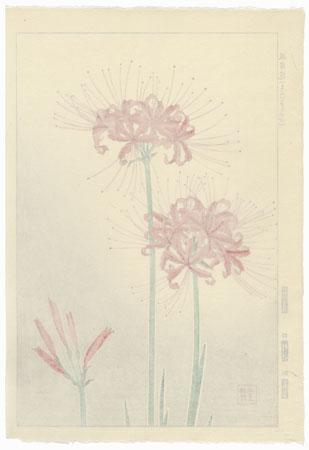 Spider Lily by Kawarazaki Shodo (1889 - 1973)