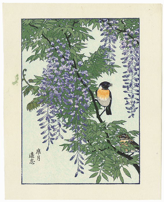 May: Bird on a Wisteria Branch by Toshi Yoshida (1911 - 1995)