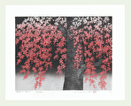 http://www.fujiarts.com/japanese-prints/Namiki/15WeepingCherry2f.jpg