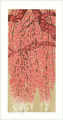 http://www.fujiarts.com/japanese-prints/Namiki/cWeepingCherry18Bf.jpg