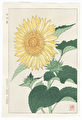 http://www.fujiarts.com/japanese-prints/DUPshodo/sunflower2f.jpg