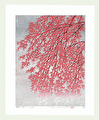 http://www.fujiarts.com/japanese-prints/Namiki/6WeepingCherry6f.jpg