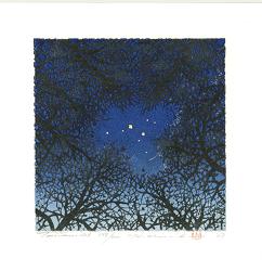 http://www.fujiarts.com/japanese-prints/gallery/namiki/hajime_namiki_treescene_126_2007.jpg