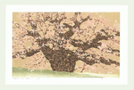 http://www.fujiarts.com/japanese-prints/Namiki/koganjif.jpg