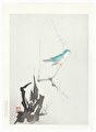 http://www.fujiarts.com/japanese-prints/DUP2/AES6_0f.jpg