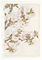 http://www.fujiarts.com/japanese-prints/DUPshodo/cherrypinkf.jpg