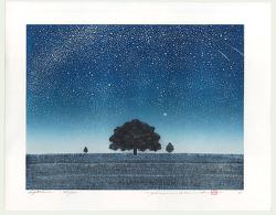 http://www.fujiarts.com/japanese-prints/gallery/namiki/hajime_namiki_night_scene_2005.jpg