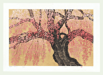 http://www.fujiarts.com/japanese-prints/Namiki/10WeepingCherry15f.jpg