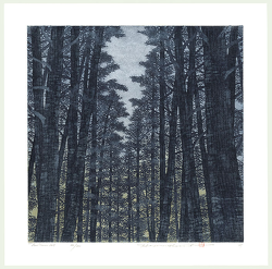 http://www.fujiarts.com/japanese-prints/gallery/namiki/hajime_namiki_treescene_128_2007.jpg