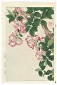 http://www.fujiarts.com/japanese-prints/shodo/crepemyrtlef.jpg