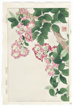 http://www.fujiarts.com/japanese-prints/DUPshodo/crepemyrtle2f.jpg